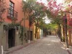 Our beautiful cobblestone bougainvillea lined street