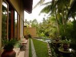 Garden, swimming pool