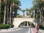 Avenue of Palms in Kos Town