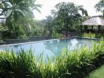 Lush gardens for relaxing in
