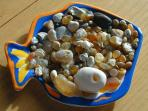 Agate Catch from your back yard---The Beach!