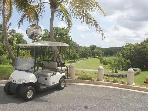 Golf Cart is not  included in basic villa rent.