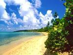 Beach less than a minute walk from the condo