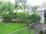 back yard and back of pool