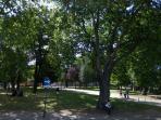 Tottenham Green (7 mins walk away) - perfect for a relaxing stroll