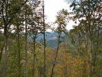 Partial Mountain Views in Summer