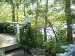Climbing Hydrangeas wrap the back porch. What a spot!!