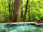 Rushing Waters Cabin-View From Hot Tub
