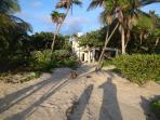 Morning view from the water line. Our landscaped beach integrates salt-tolerant native plants.