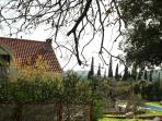 villa antun at front with lemon&orange trees and situated in nature, close to the sea and any spot