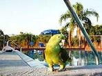 Bird at the pool
