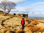 Walking the Bronte Way