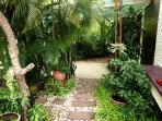 The tropical garden private path