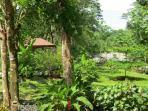 2 Acre River Garden