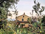 Casa Chiocciola - garden view