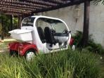 GEM Golf Cart