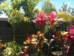 Bula Vista garden