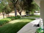 Front Porch View