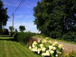 Nice garden around Wirtzfeld Valley Guest House