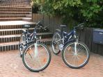 Mountain Bikes are available or Electric Bikes can be rented nearby