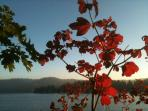 Fall colors on Lake Arrowhead