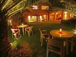 Beautiful Palmgarden available to all our guests. Smoking area.