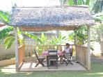 Summer house in rear garden