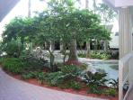 Gorgeous Landscaping throughout.  This is by garage entrance to building