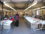 Brand new fresh fish market,made by highest standards