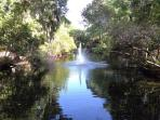 One of many lagoons with fountain found in our tropical complex