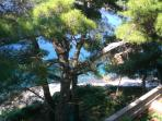 The pines add such a divine feeling to the villa