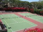 Seascape Sur Tennis Courts