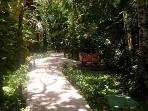 Tropical garden path to your beach club