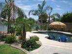 Yard & Pool