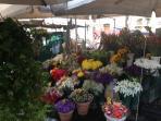 Campo dei Fiori open market (1 min. walk)