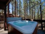 Private Lake Tahoe vacation rental in Lake Village (LV58)