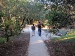 The bushland path that leads to Marcus Beach - a shady stroll regardless of the time of day