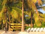 Henry Morgan Beach