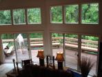 westerly windows - LR to deck & woods