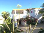 Affordable Family Beach Front House - Chelem, Yuc