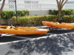 Kayaks with carrier carts...so easy