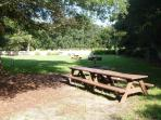 Picnic Area with grills