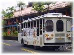 The Kona trolley runs just in front of the condo every hour.