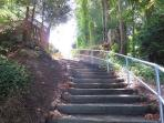 down the steps