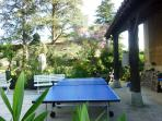 Table tennis close to the swimming pool