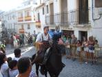 Horse show at the summer fiesta in Guejar Sierra