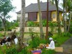 Village priest doing Abundance ceremony before rice planting