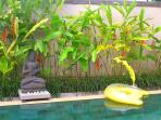 Our sparkling pool, pool toys and Buddha for a serene swim