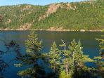 Balcony view of Finlayson Arm and Gowlandd Tod Provincial Park on the opposite side