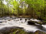 Dwarfskill Stream is five minute walk into the glen